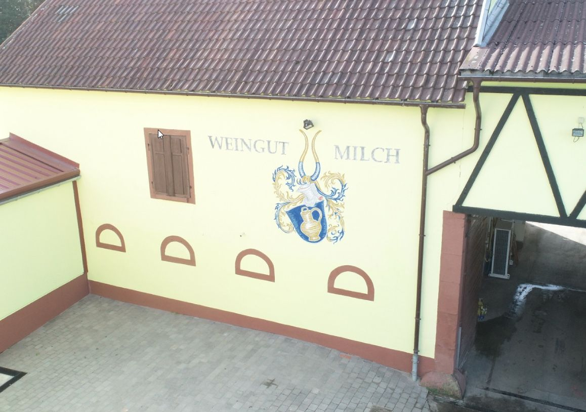 Weingut_Milch5.jpeg